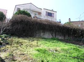 Hillside Building, Distressed Concrete Retaining Wall